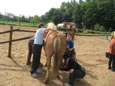 Bevor es zum Ausritt geht, muss das Pferd geputzt werden. Alle helfen dabei.